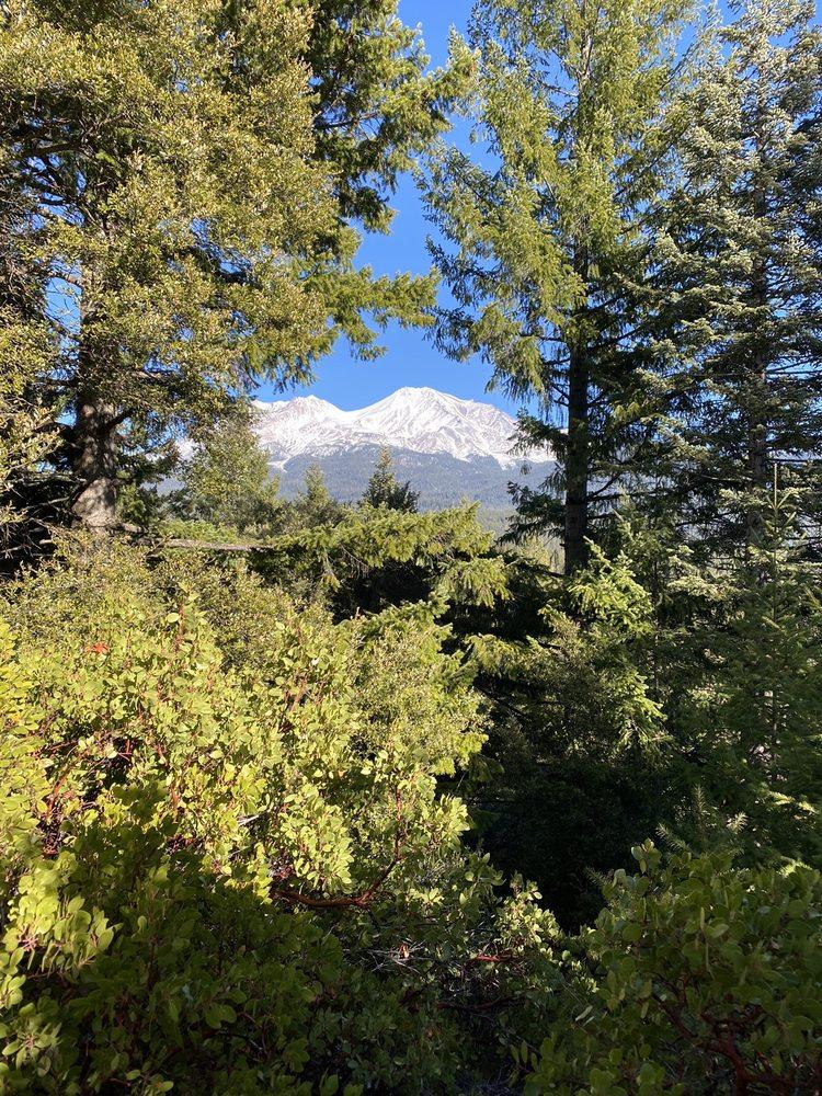 Robin Kohn, Mt. Shasta Fun Guide: Mount Shasta, CA