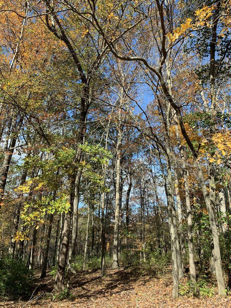 Rock Creek Regional Park: 6724 Needwood Rd, Rockville, MD
