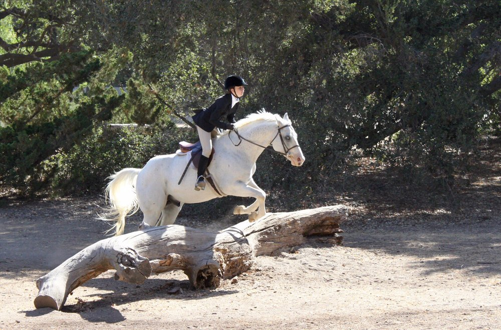 Foxfield Riding School: 1250 E Potrero Rd, Westlake Village, CA