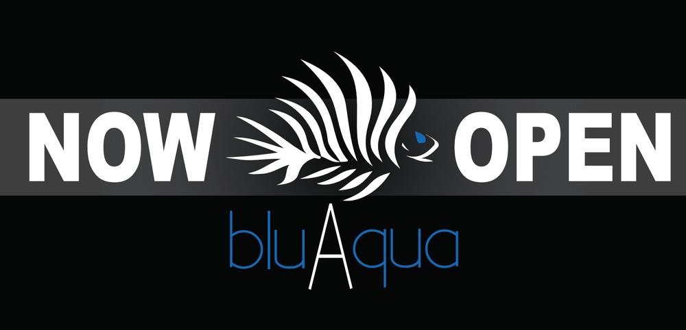 bluAqua Restrobar: 930 Elm St, Manchester, NH