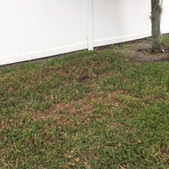 Photo Of TruGreen Lawn Care   Orlando, FL, United States