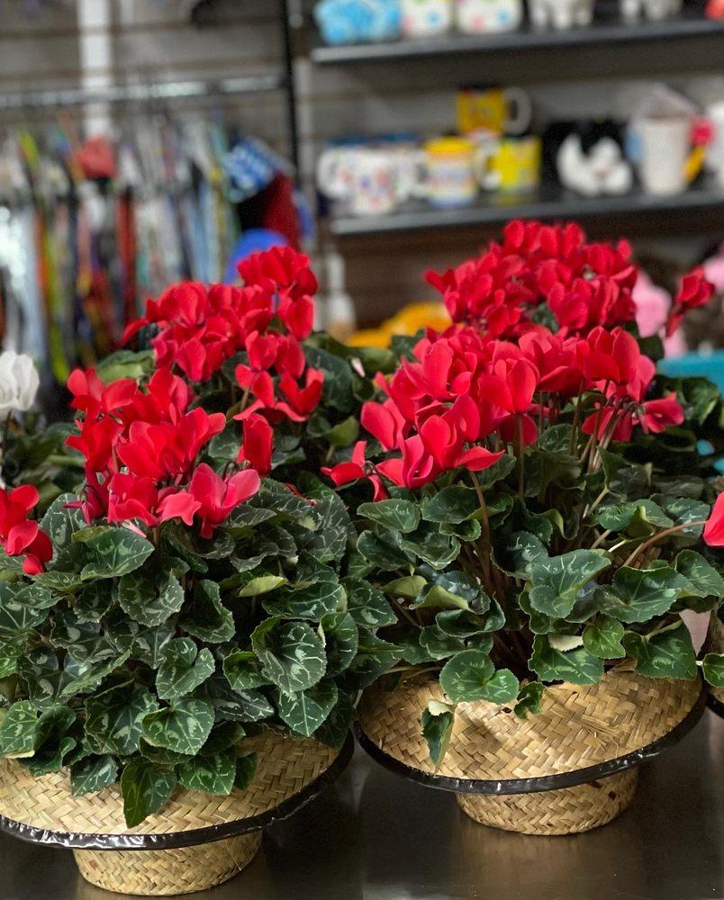 Rodney's Flowers Shop