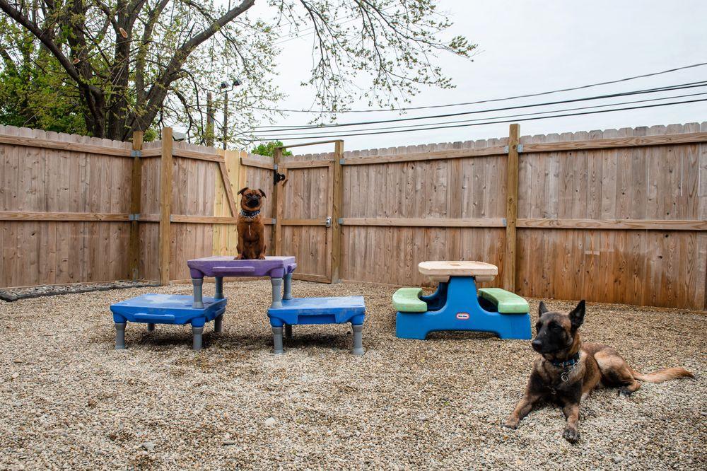 Dog Den Chicago: 7211 Franklin St, Forest Park, IL