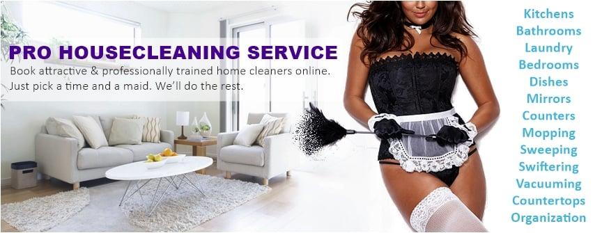 Sexy maid service houston