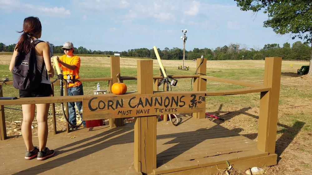 Sand Mountain Pumpkin Patch and Corn Maze: 8420 Cox Gap Rd, Boaz, AL