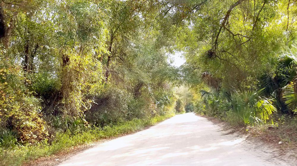 Camp David: 2000 S Bishop Point, Inverness, FL