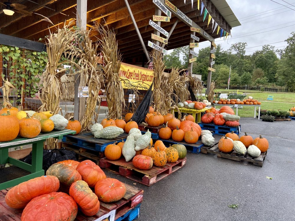 Cane Creek Farm: 912 Cane Creek Rd, Fletcher, NC