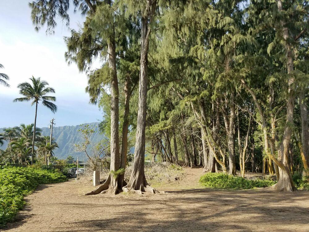 Waimanalo Bay Beach Park Campground