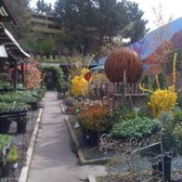 Photo Of Mt Diablo Nursery Garden Lafayette Ca United States