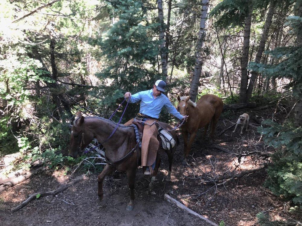 SC Trail Rides: 4550 US-89, Sevier, UT