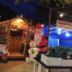 Nc Christmas Tree Farm.Dowless Christmas Tree Farm Christmas Trees 449 Westwood