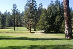 Twain Harte Golf Club: 22909 Meadow Ln, Twain Harte, CA