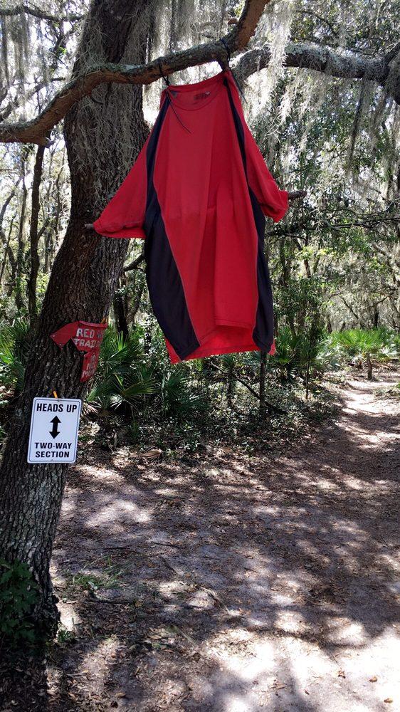 Balm Boyette Scrub Preserve: 13998 Balm Boyette Rd, Wimauma, FL