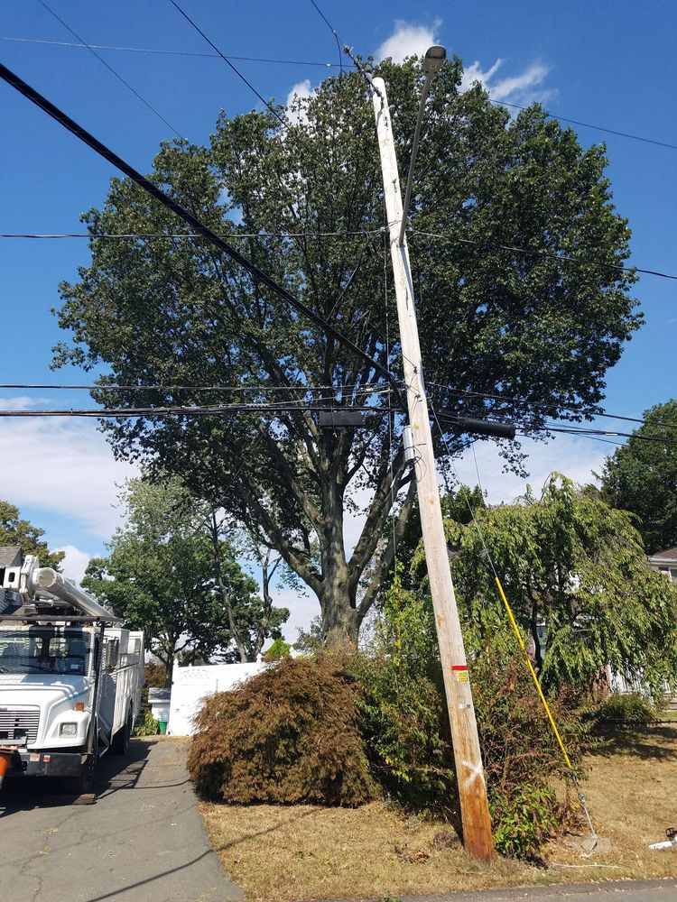 Suffern Tree Service: 539A Kings Hwy, Valley Cottage, NY