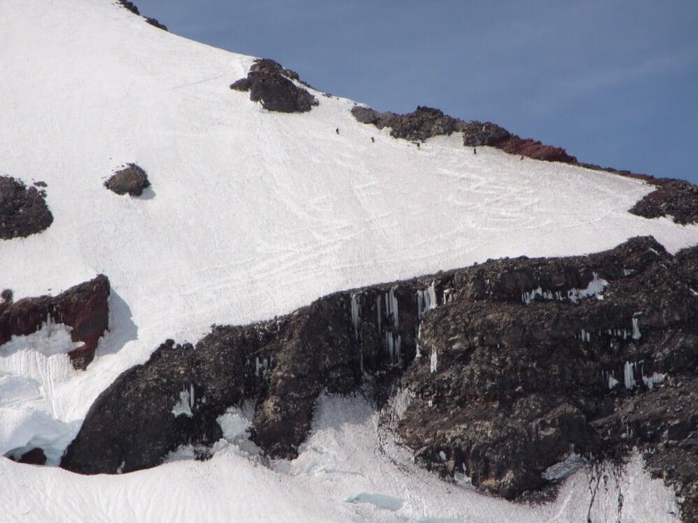 International Mountain Guides: 31111 State Rt 706 E, Ashford, WA