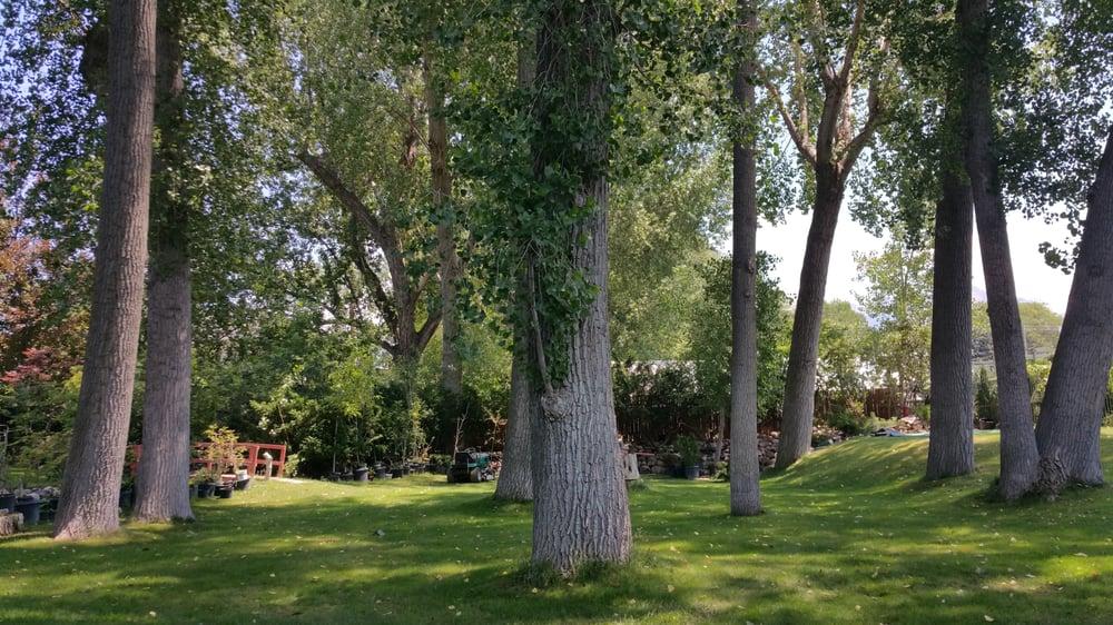 Millcreek landscape 14 foto progettazione di giardini for Aggiunte di saltbox house