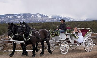Absolute Prestige Limousine Service: 1351 Q Rd, Loma, CO