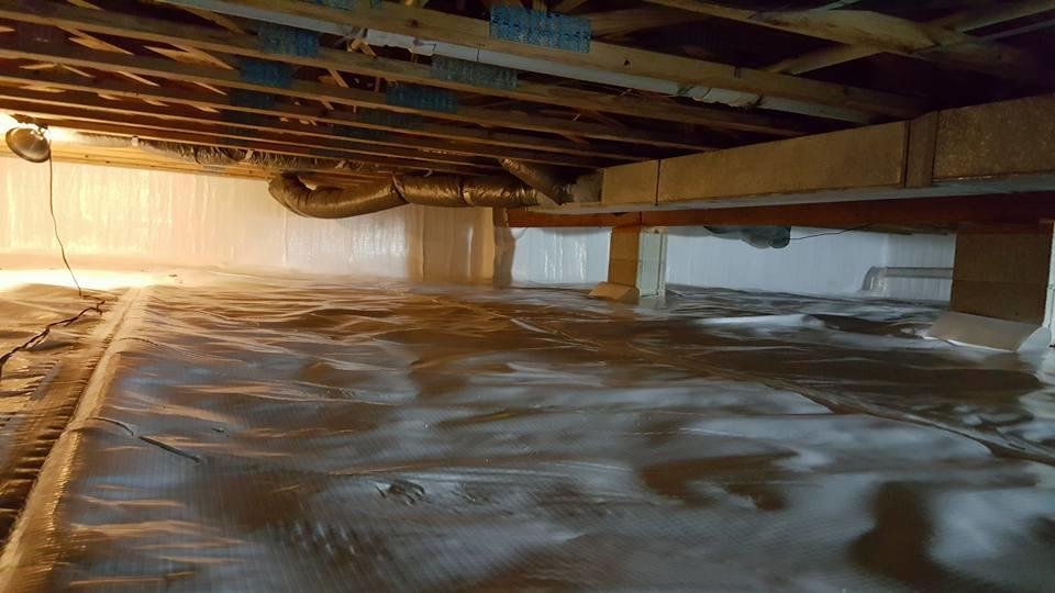 Atlantis Waterproofing and Mold Control: 982 Humble Dr, Cookeville, TN