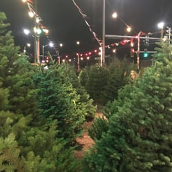 photo of holman road christmas trees seattle wa united states trees galore