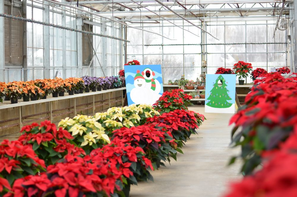 Lynde Greenhouse & Nursery: 9293 Pineview Ln N, Maple Grove, MN