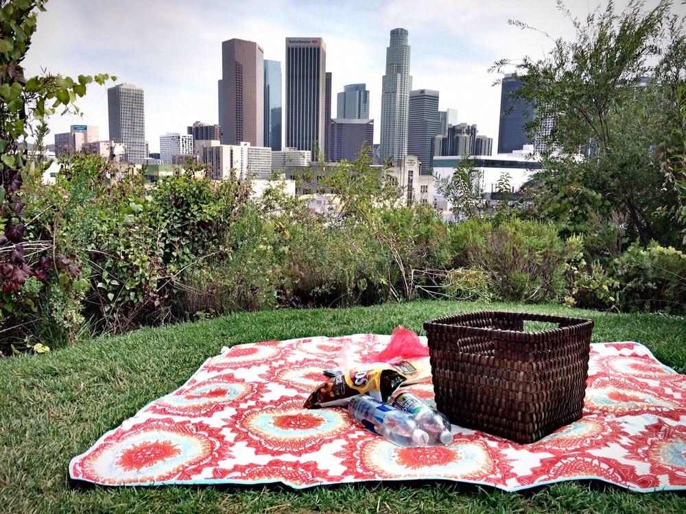 Tokeo la picha la picnic view
