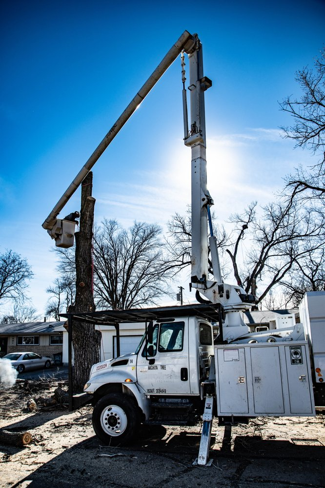 Wichita Tree Service: 6111 E Danbury, Wichita, KS