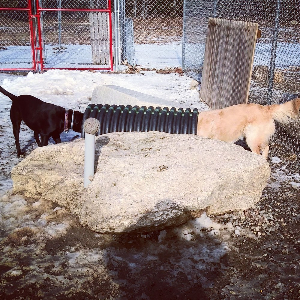 Boothbay Canine Daycare & Boarding: 653 Wiscasset Rd, Boothbay, ME