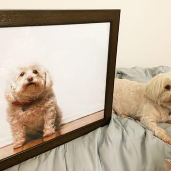 Sherman McNulty - 41 Photos & 50 Reviews - Framing - 3100 Wilshire ...