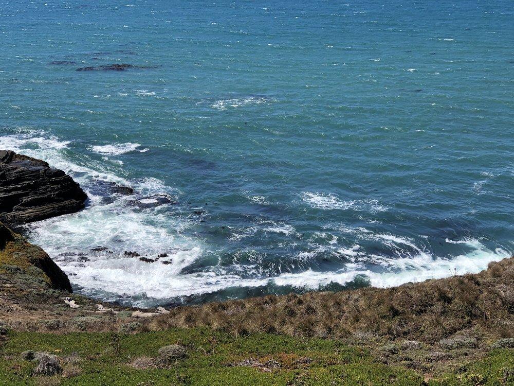 Coasting Home: 39040 S Hwy 1, Gualala, CA