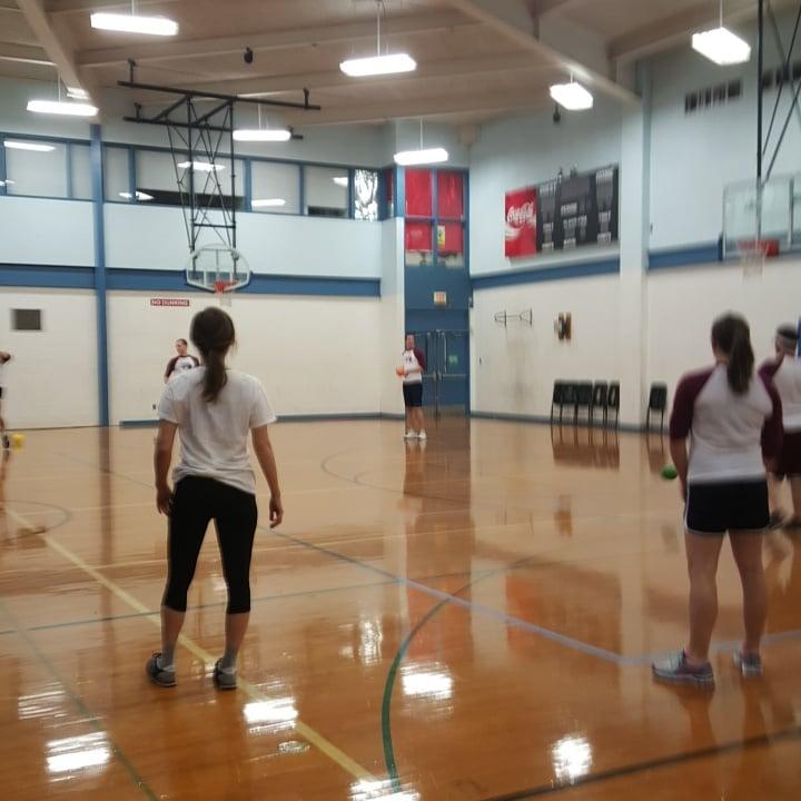 Brookens Gymnasium and Sport Fields: 1776 E Washington St, Urbana, IL