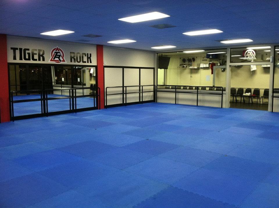 Photo Of Tiger Rock Martial Arts Houston Tx United States