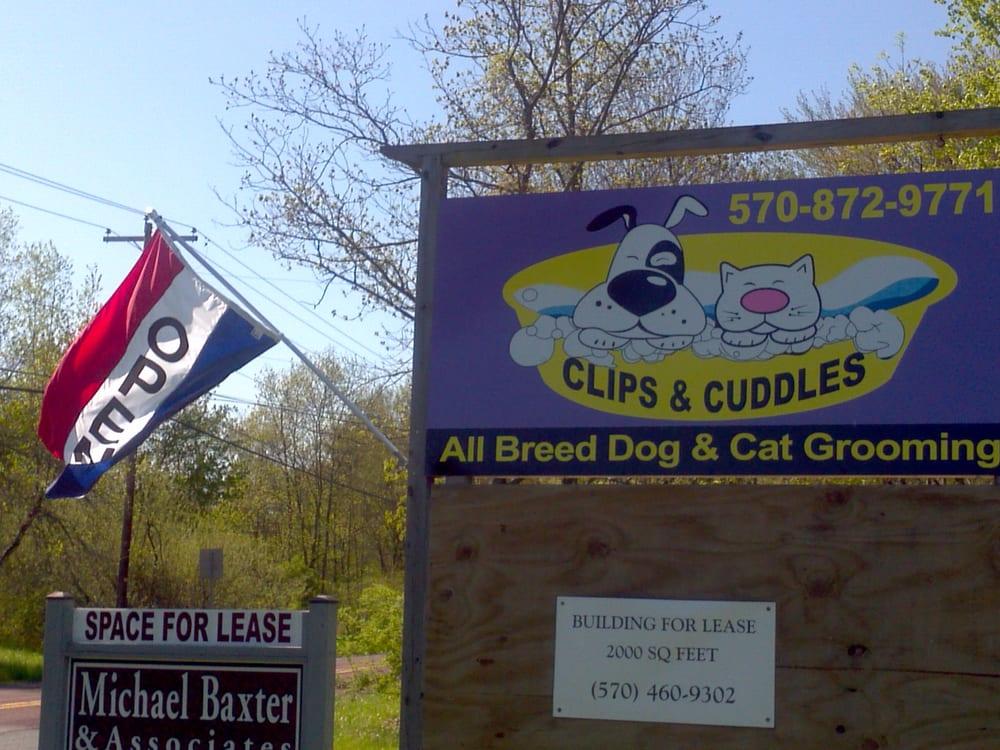 Clips&Cuddles: 1029 Rt 715, Saylorsburg, PA