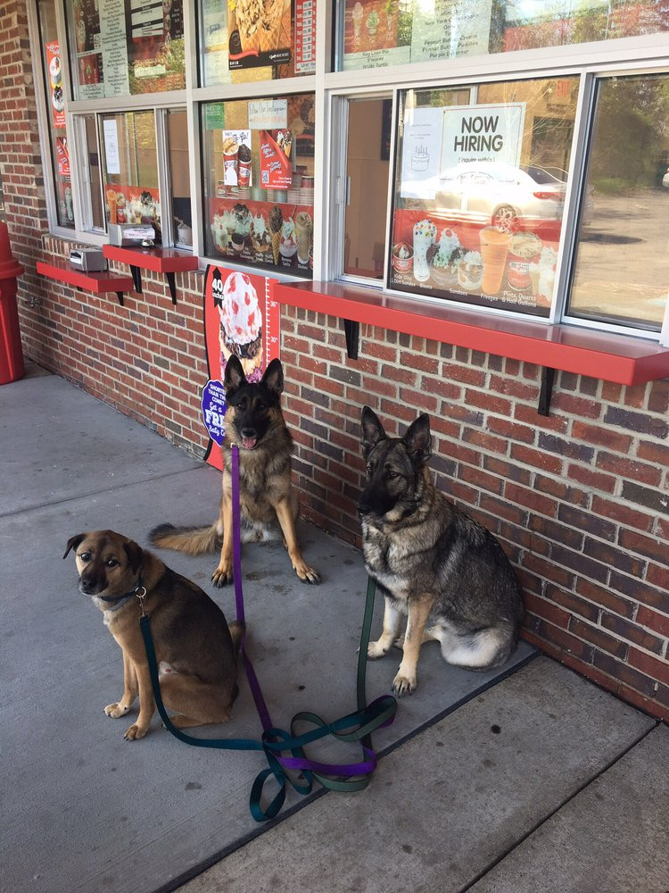 Paw & Order Dog Training: Imperial, PA