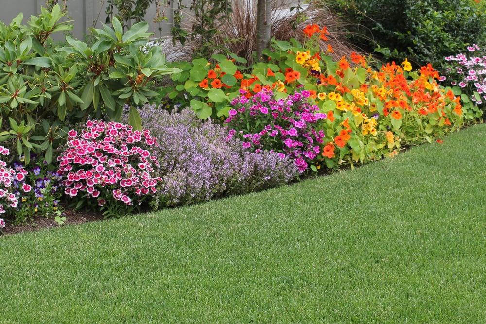 Healthy Lawns, Inc