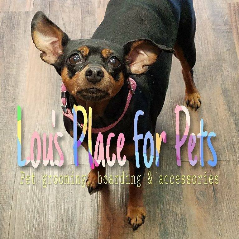 Lou's Place For Pets: 124 N Lake Dr, Prestonsburg, KY