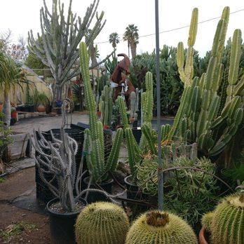 Photo Of California Cactus Ranch Reseda Ca United States