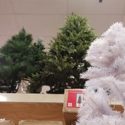 Christmas Tree Hartsdale Ny