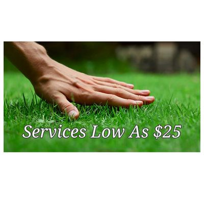 on hand lawn care