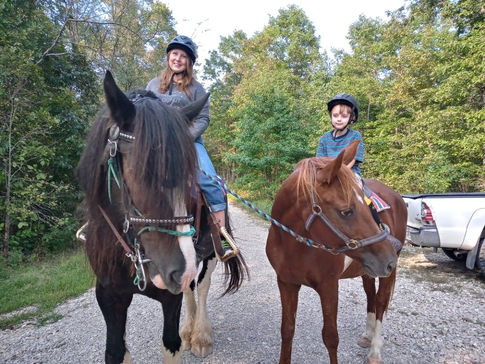 Summit's Valley Shire And Sport Horses: 1703 N Spring Dr, Horseshoe Bend, AR