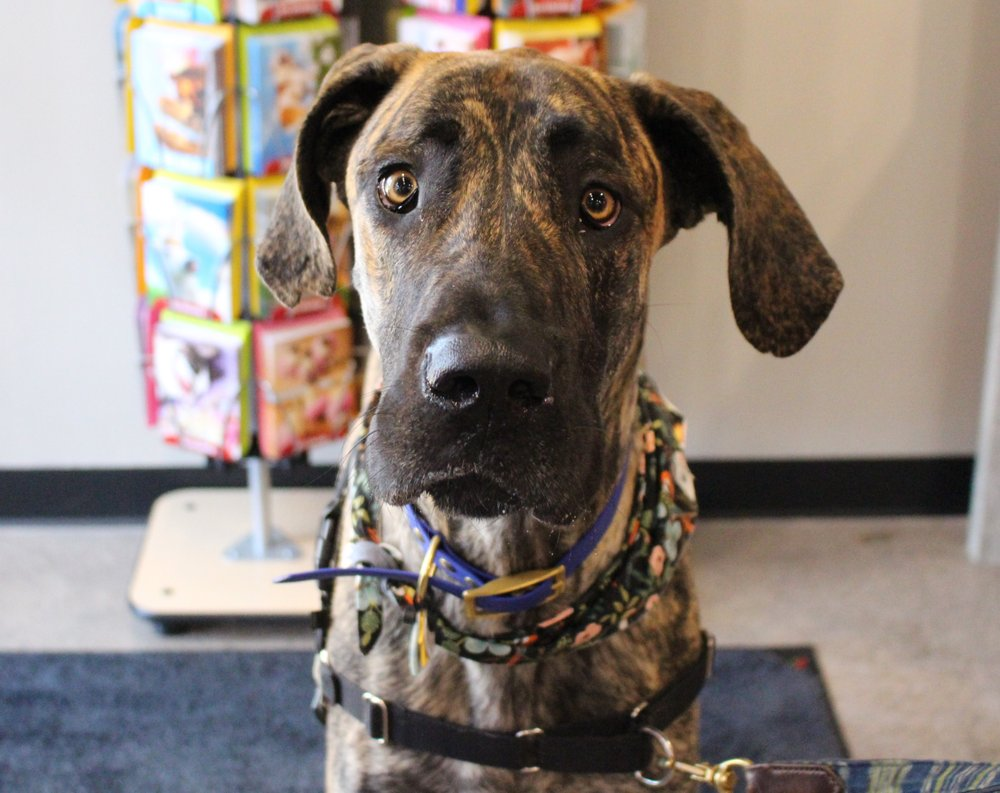 Chuck & Don's Pet Food & Supplies: 2244 N Greenwich Rd, Wichita, KS