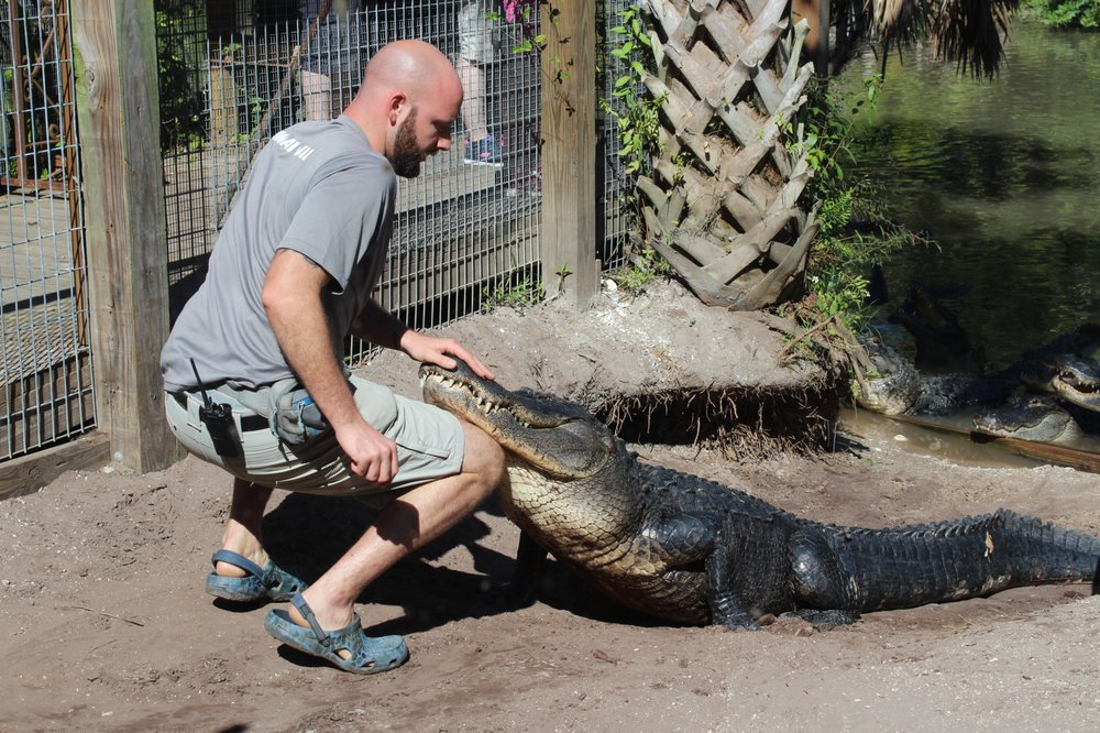 Wild Florida Airboats & Gator Park - 796 Photos & 156