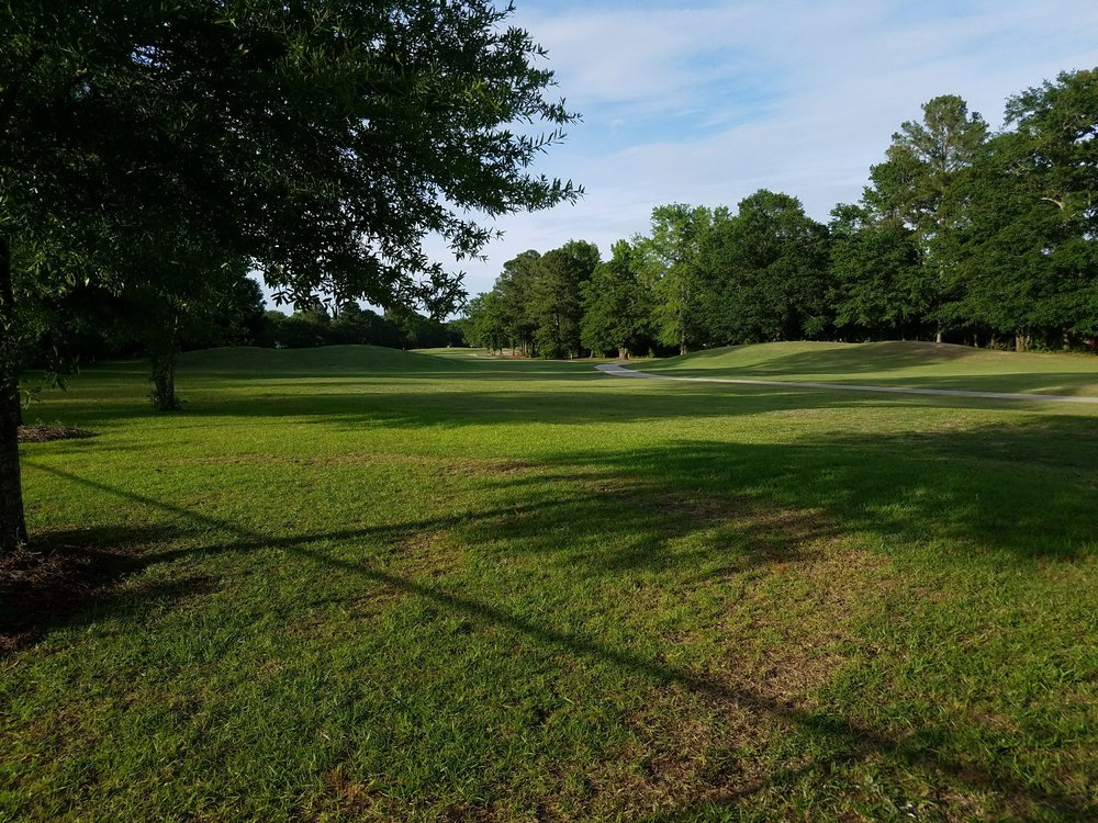 The Links At Lakewood: 3600 Green View Pkwy, Sumter, SC