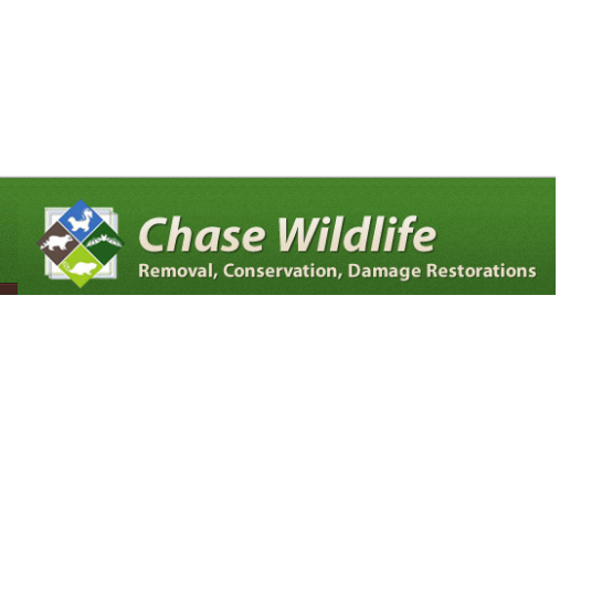 Chase Wildlife Pest Control Gypsum CO United States