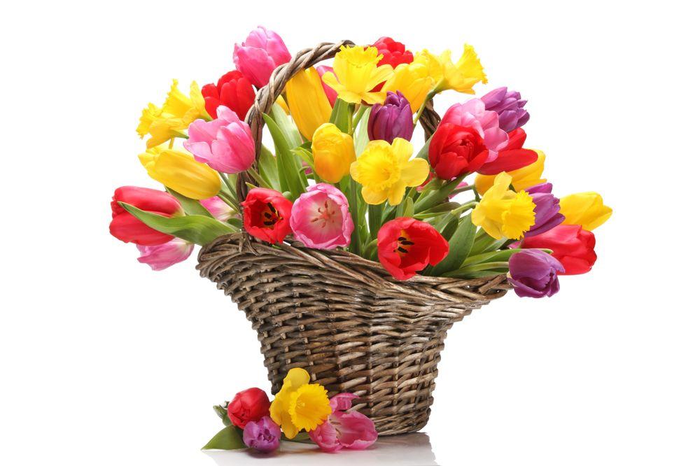 Al Medina Floral and Gift