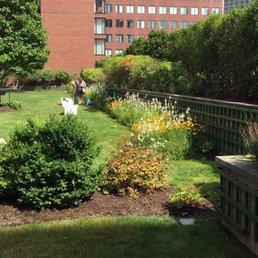 Fotos De Cambridge Center Roof Garden Yelp