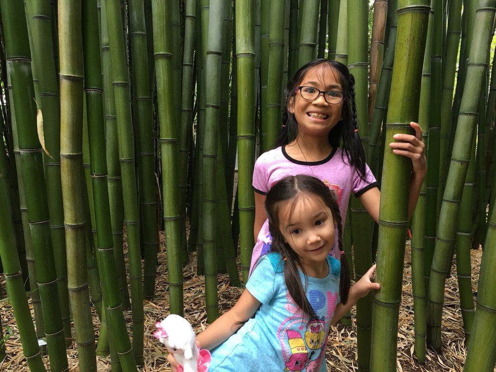 Clinton Bamboo Growers