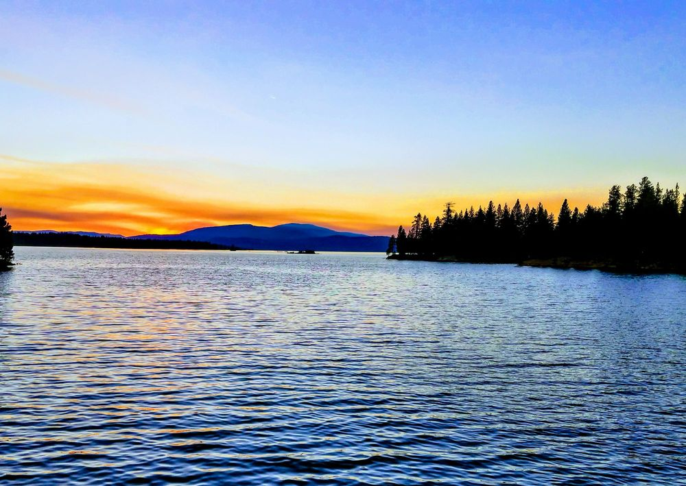 Lake Davis Resort - Cabins & Motels: 7582 Buckbrush Dr, Portola, CA