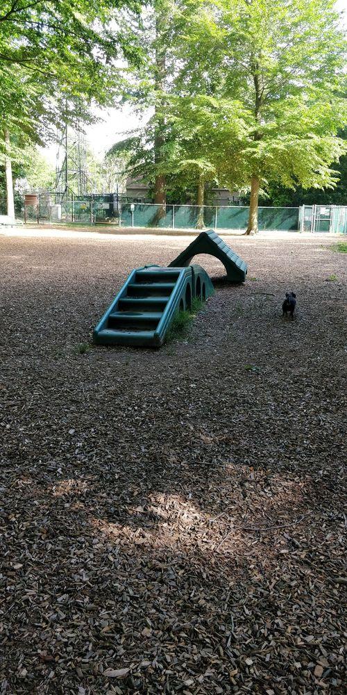 Horsham Dog Park