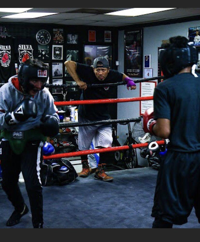 Silva Boxing - MMA