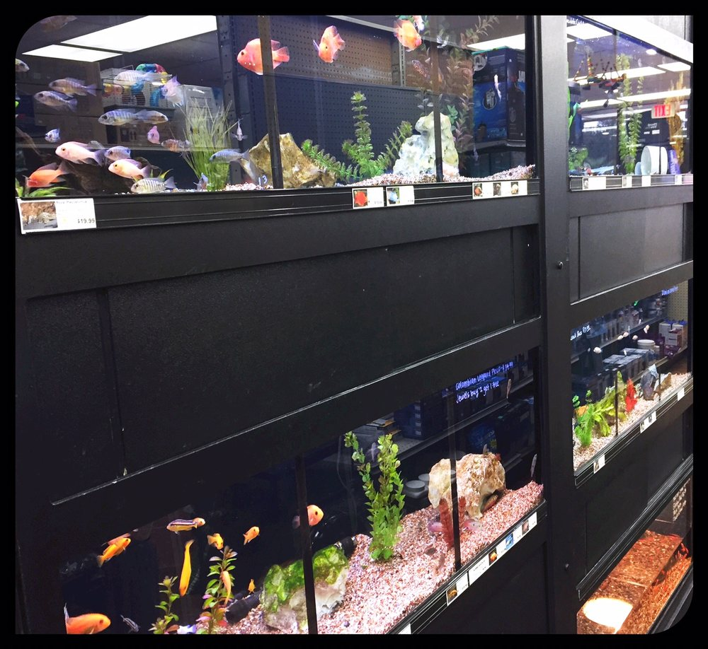 Tropical Fish & More Pet Supply: 13322 Hwy 90, Boutte, LA